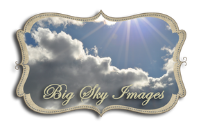 Big Sky Images ~ Michele Wallace Design